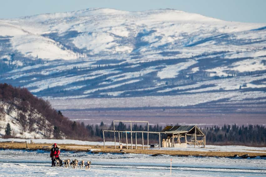 Aliy Zirkle mushing into Unalakleet. She was the first musher to reach the coast, an important milestone in the race. Mar 8, 2014